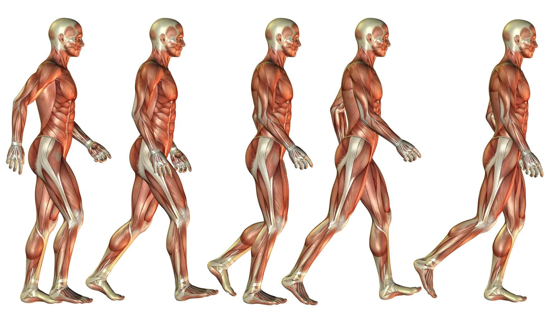 southfields physiotherapy gait analysis transformational zones small